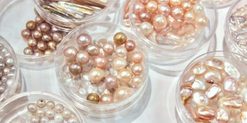 dSCHOOL「わかりやすい淡水真珠 」レポート