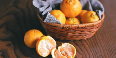 ARCHIVE MARKET FROM 「食の活動家プロジェクト」 無茶々園の柑橘セット販売