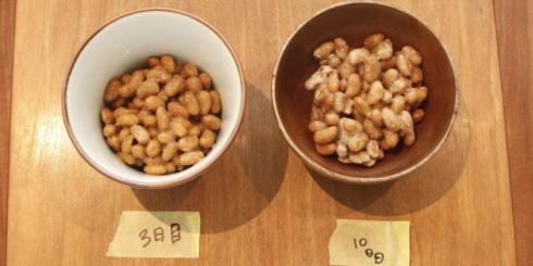 食の語り部2016レポート 1 美味しい納豆づくりを支える、素材と発酵の力