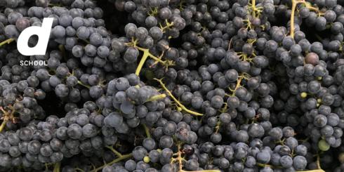 〈開催中止〉わかりやすい自然派ワイン ー醸造家 福島有造さんから学ぶ小川町でのワインづくりー