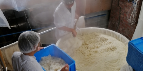 鳥取県「梅津酒造と節目の新酒」