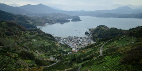山と海と人が共に生きる「無茶々園」