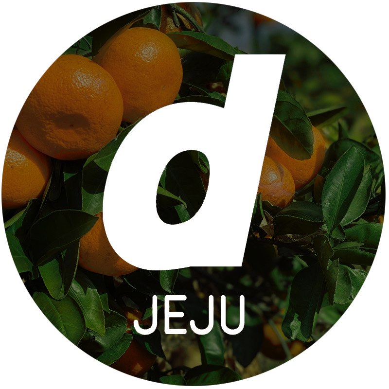 D&DEPARTMENT JEJU by ARARIOが活動スタート